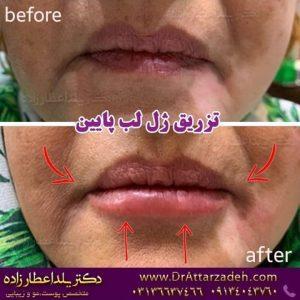 دکتر یلدا عطارزاده